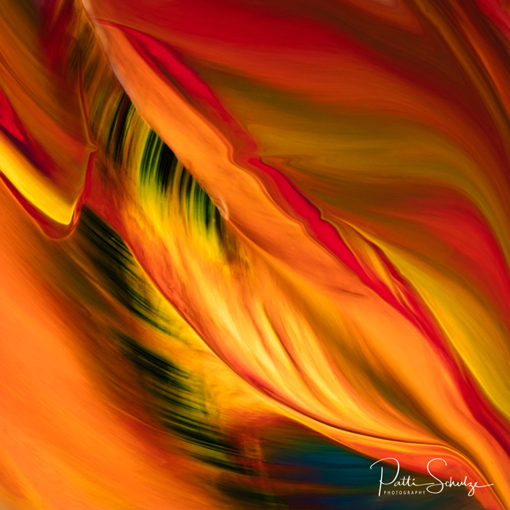 Fire Feather